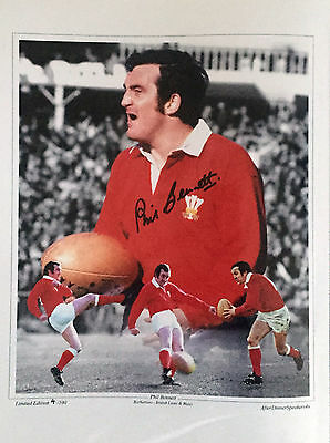 SALE SIGNED WALES  16 x 12 PHOTO COLLAGE PHIL BENNETT
