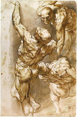 Peter Paul Rubens Drawings: 4 Ecorche Nude Males - Fine Art Prints