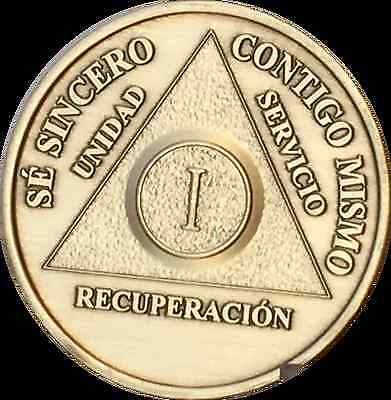 1 Year año Español Spanish AA Medallion Sobriety Chip Alcoholics Anonymous Coin