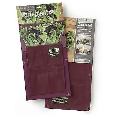 Aubergine Verti-Planter Wall Planters by Burgon & Ball (Pack of 2)