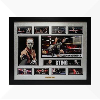 Sting WWE Signed & Framed Memorabilia - Silver/Black Limited Edition