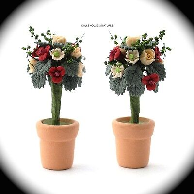 Two Standard Roses in a Terracotta Pot, Dolls House Miniatures. 1.12TH SCALE