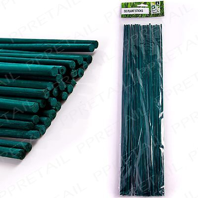 30 x GREEN GARDEN PLANT STICKS Canes Support Training Growing Flower Vegetables