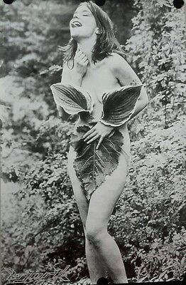Bjork Nude Nymph in the Woods Vintage Giant  Poster 38 x 60 inch.FREE SHIPPING