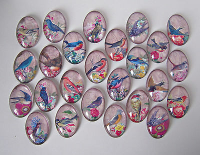 Vintage Birds Glass Cabochons Oval 25mm x 18mm Crafts Jewellery Making 5 10 25