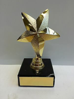 110mm Gold Star Trophy,Award,Dance,School Award,Ideal Gift,FREE Engraving (cl)