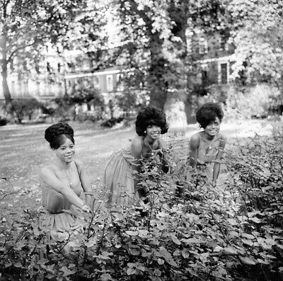 8x10 Print Diana Ross The Supremes 1958 #SP3