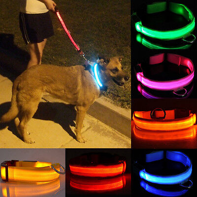 Seguridad Luminoso Intermitente Luz Ajustable Perro Mascota Collar Plain Nylon