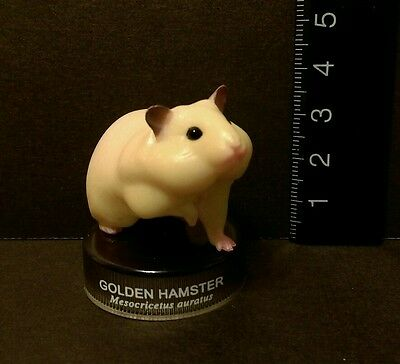 Kaiyodo Hamster's Lunch Golden Hamster Figure B Cute!!
