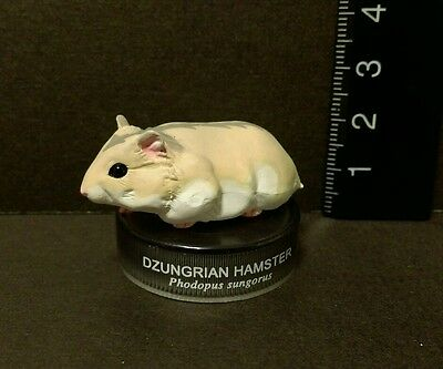 Kaiyodo Hamster's Lunch Part 1.5 Dzungrian Hamster Figure C Cute!!