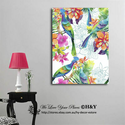 Birds of Paradise Stretched Canvas Print Framed Wall Art Decor Painting Abstract