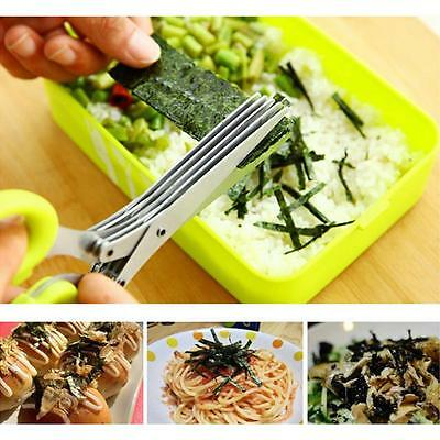 Multi-functional Stainless Steel Kitchen 5 Layers Scissors Scallion Cut Scissors