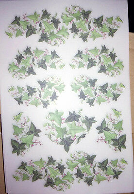 Ivy Green Rub-On Transfers Decals 5 Sheets