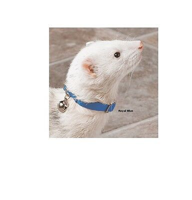 Bell Collar for Ferret - Instantly locate Fully adjustable design
