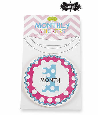 Mud Pie Girl Monthly Milestone Stickers  Set of 12 - DISCONTINUED