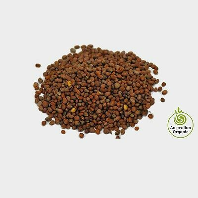 Radish sprout seeds - 500g Certified Organic