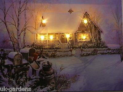 Christmas House Picture With LED Lights Canvas Print 40x30cm Battery Operated