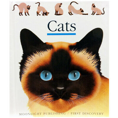 Moonlight Publishing Cats Book - Children's Acetate Learning Book About Cats