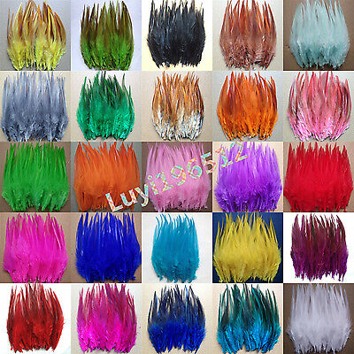 Beautiful 50-500pcs rooster tail feathers 10-15cm / 4-6inch 32 Colors
