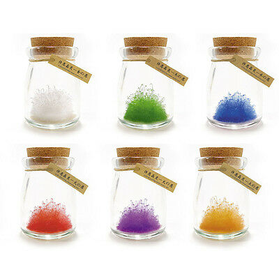 Magic Crystal Growing Kit Children Science Lab Educational Learning Toy-White