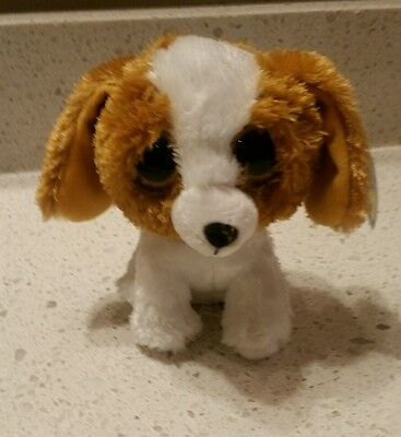 """2013 TY Beanie Boos COOKIE the Dog 6"""" Purple Tag Solid Eyes NEW"""
