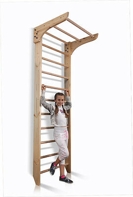 Sport Swedish Ladder Wall Bars Gym Home Children Gymnastic Play Kids Learning