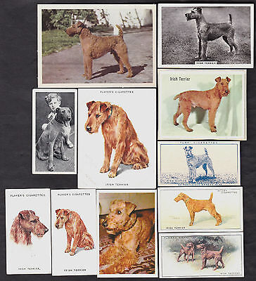 11 Different Vintage IRISH TERRIER Tobacco/Candy/Tea Dog Cards