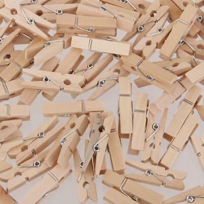 100 Natural Wooden Mini Craft Pegs Cloth Pin Photo Hanging Spring Clips 25mm