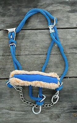 Hamilton Royal Blue rope cattle / cow halter yearling sz w/fleece nose and chain