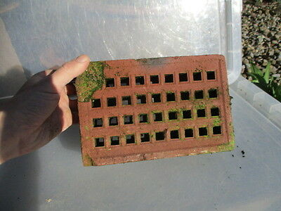 Victorian Terricotta Air Brick Vent Grate from Harrogate Library House 8.75x5.75