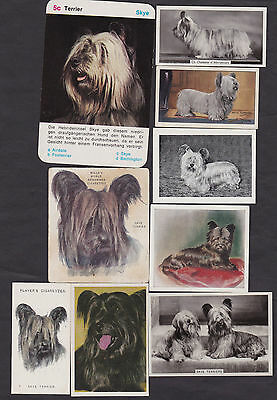9 Different Vintage SKYE TERRIER Tobacco/Candy/Tea Dog Cards