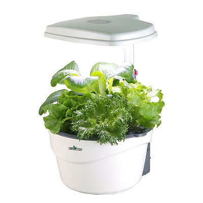 EcoPro HP-2015L LED Indoor Personal Counter Top Hydroponics Garden Kit
