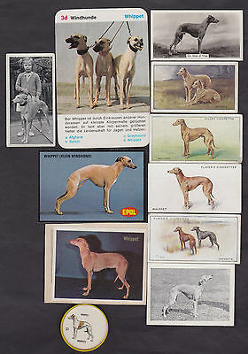 11 Different Vintage WHIPPET Tobacco/Candy/Promo Dog Cards