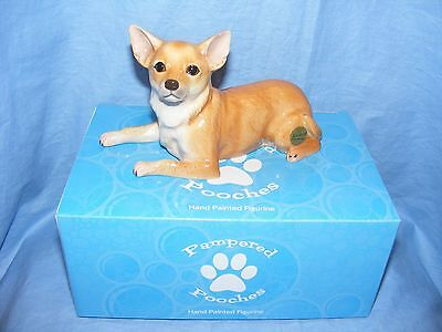 John Beswick Dog Chihuahua JBPP3 Pampered Pooches NEW Present Gift Figure