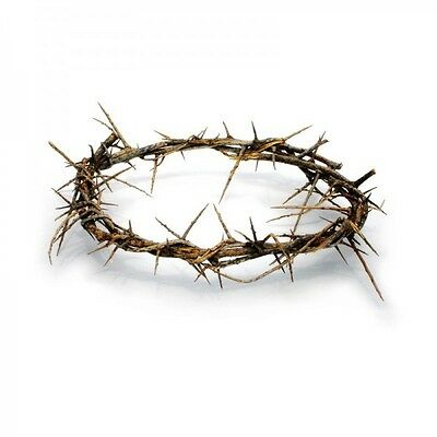 Crown Of Thorns From The Holy Land of Bethlehem