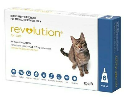 Revolution Blue 6 pack for Cats *Plus 2 FREE Bonus Doses*
