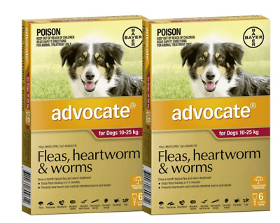 Advocate Red for Large Dogs 10-25kg 12pk ( 2 x 6pks)