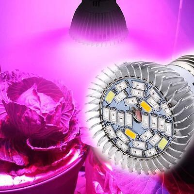 28W Full Spectrum E27 Led Grow Light Growing Lamp Light Bulb For Flower Plant MT