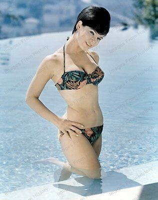8x10 Print Yvonne Craig Sexy Outdoor Beauty 1968 #YC91