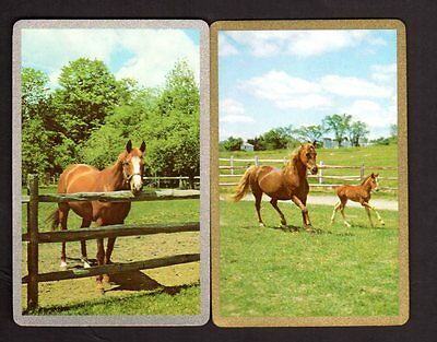 Vintage Swap/Playing Cards - Beautiful Horses Pair (Gold & Silver Borders)