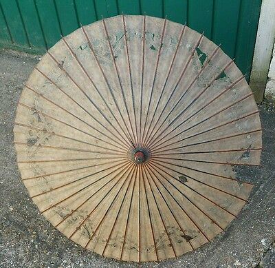Vintage Edwardian Paper Parasol With Cane Handle for Display only, 83cm wide