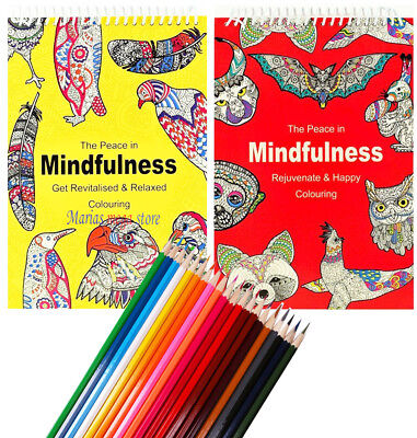 Adult Anti Stress Therapy Colouring Book + 30 PENCILS + 24 FELT TIP PENS