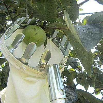 Metal Fruit Picker Picking Apple Pear Orange Mango Tree Gardening Grab Basket