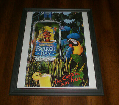 Captain Morgain Parrot Bay Framed Ad Print