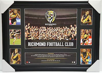 Richmond Tigers Afl Official Team Super Print Collage Framed - 2016 Cotchin