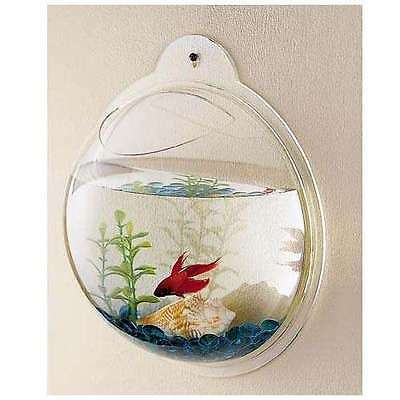 New Fish Wall Mounted Bowl/Aquarium Wall Hanging Tank/ Plant Decoration Pot. • EUR 3,00