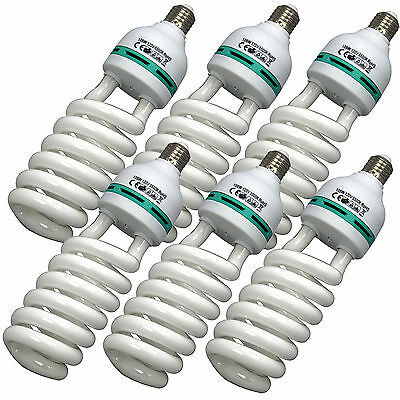 BlueDot 105W Photo Video Fluorescent Spiral Daylight Light Bulbs 6-Pack 5500K