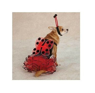 Lucky Bug for Dog Halloween Costume - ladybug dog costume ! XS  sc 1 st  PicClick & CASUAL CANINE LUCKY Lady Bug Dog Halloween Costume XS-XL Ladybug Pet ...