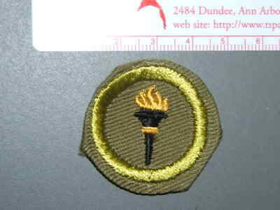 Boy Scout Merit Badge Public health circa '46-'59 4036M