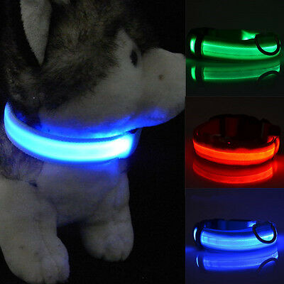Flashing Light Up Adjustable Small Pet Led Dog Collar Supplies Products Yellow